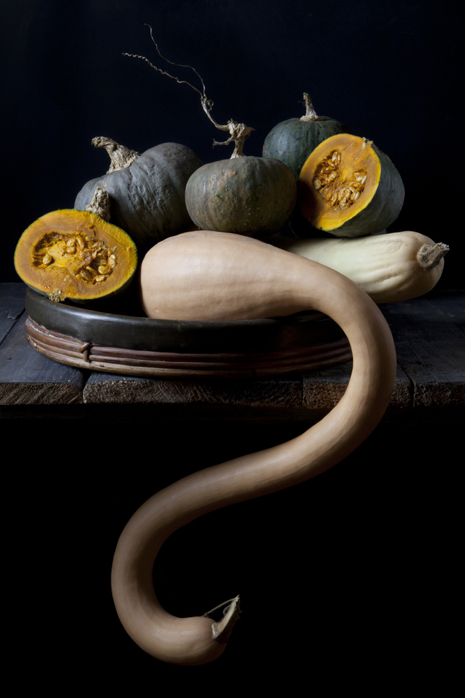studio shot of different kinds of pumpkins on dark background