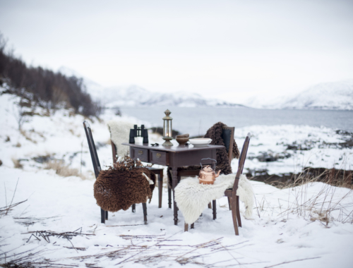 Nordic Spring - A silent awakening in Northern Norway | The Freaky Table by Zaira Zarotti